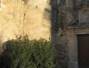Passejada-capvespre-Parc-Foix