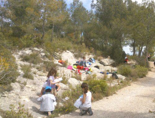 Descobrim del Parc del Foix